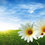 In Mugello è arrivata la Primavera  – Tanti appuntamenti per il fine settimana