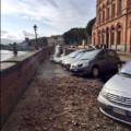 Firenze – Voragine Lungarno Torrigiani – Aggiornamento