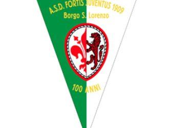 fortis1