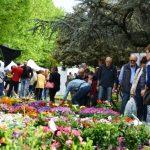 """Borgo San Lorenzo – """"Fiorinfiera"""" porta la primavera in strada"""