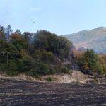 Vicchio-Dicomano – In due giorni a fuoco diversi ettari di bosco e terreni agricoli
